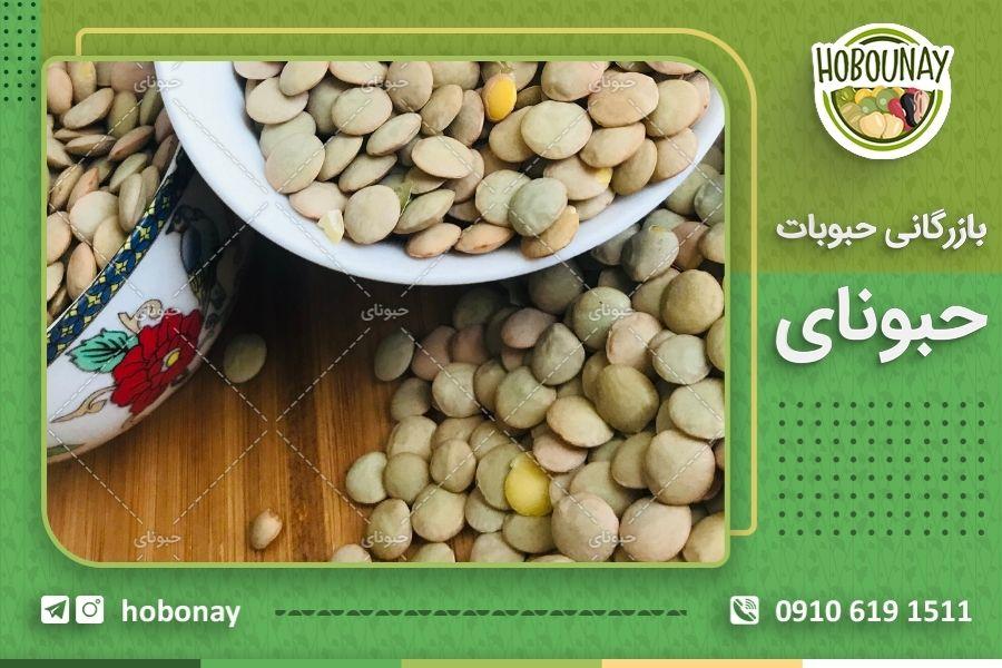 اطلاع از قیمت عدس ایرانی به صورت مستقیم