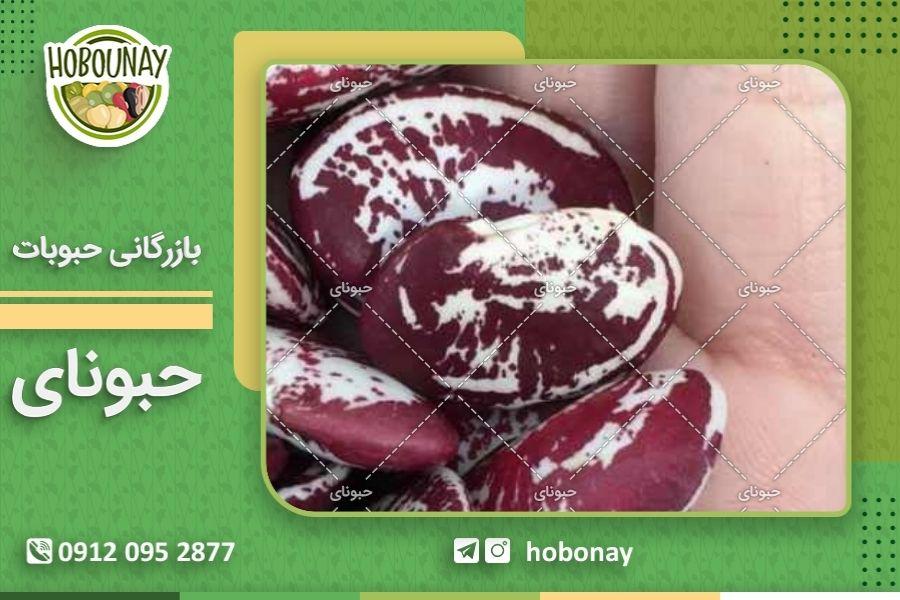 پخش عمده لوبیا عروس توسط شرکت حبونای