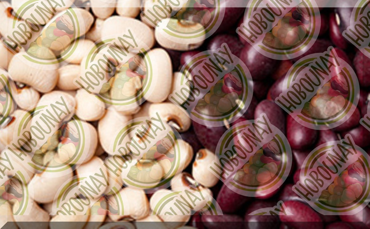 قیمت خرید و فروش لوبیا قرمز
